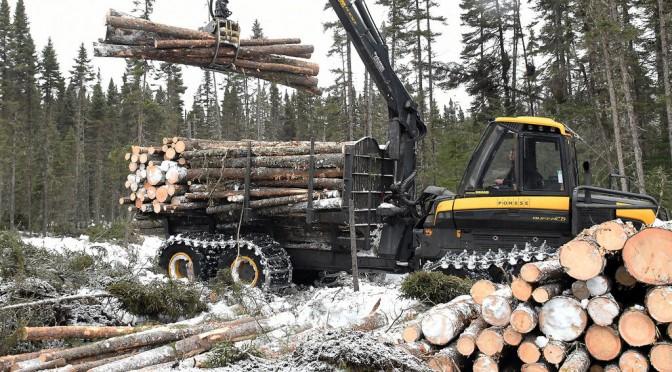 50% plus de bois d'ici 2063