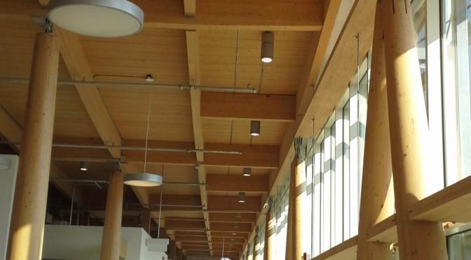 Le bois remplace lentement l'acier