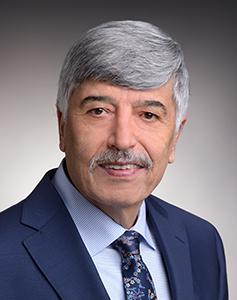 Masoud Farzaneh