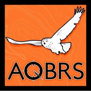 Nlogo AQBRS couleur