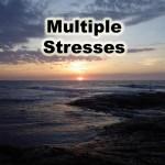 stress-Covert