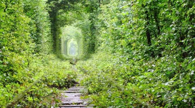 droits d'auteur: depositphotos.com/tverkhovinets